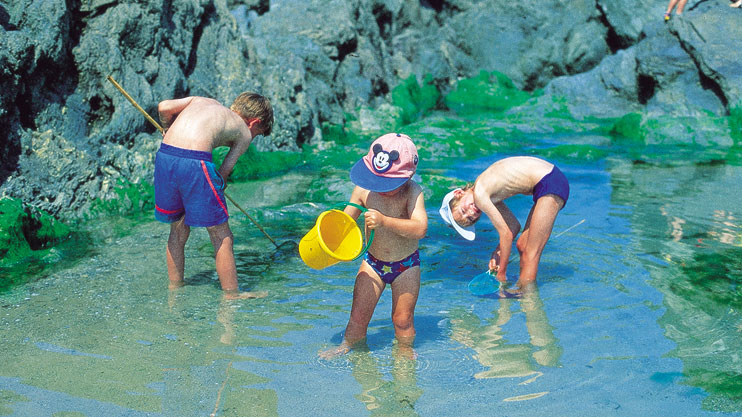Rock pool beach fun Porth Newquay